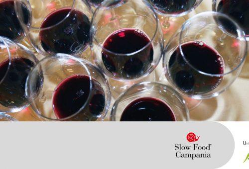 Analisi del consumo dei vini in Campania