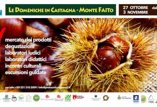 Le Domeniche in Castagna