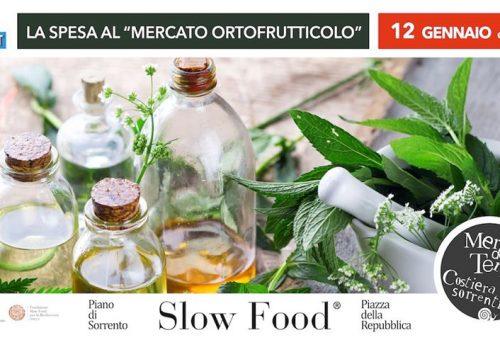 Infusi e miele al Mercato della Terra Costiera Sorrentina