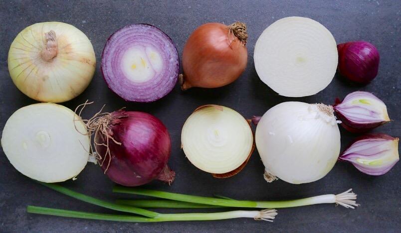 Cipolle e orto in estate