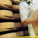 Scopriamo i formaggi: c'è #Cheese!