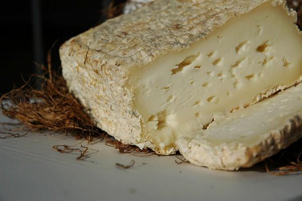 Dal lattosio ai fermenti, ecco i falsi miti sui prodotti lattiero-caseari marketing oriented