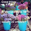 Il Mercato della Terra di Bologna: cosa trovate sabato 22