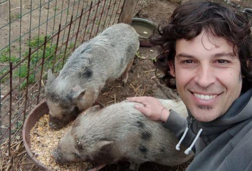 Razzia di animali a Fiumicino in una fattoria didattica. La solidarietà di Slow Food e la ripartenza