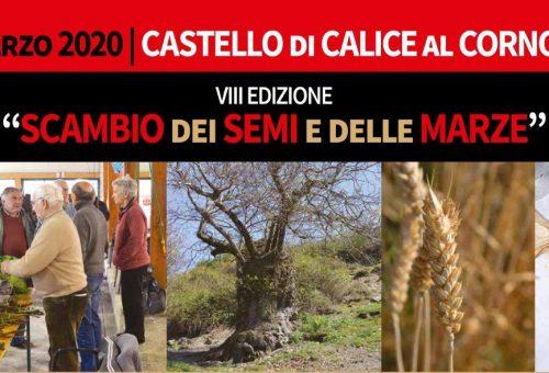 Scambio dei semi e delle marze VIII° Edizione a Castello di Calice Cornoviglio