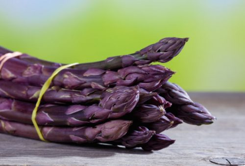 Al Mercato della Terra di Sarzana il Presidio Slow Food dell'asparago violetto di Albenga e altre eccellenze della Piana