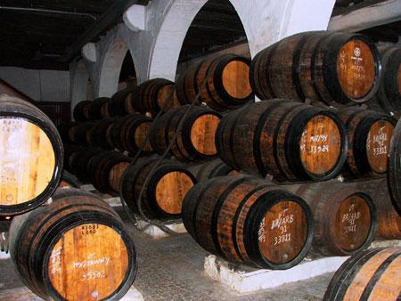 vino-oporto1