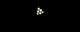 logo_loro_maesta