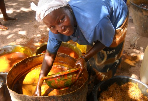Olio di palma, la posizione di Slow Food