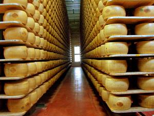 Trucioli di legno nel Parmesan