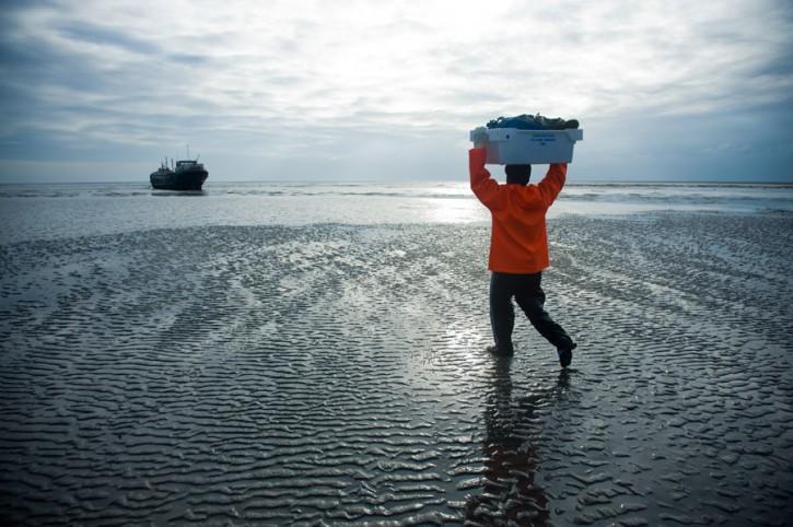 Pescatori del Waddenzee