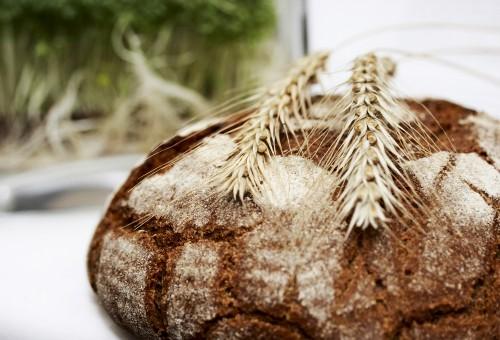 Pane: l'analisi sensoriale per riconoscerne la qualità