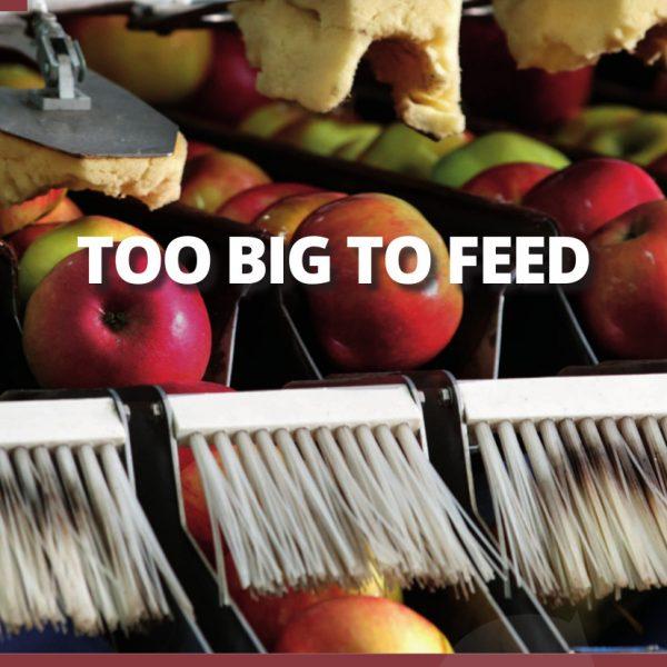 L'allarme di un panel di esperti: le grandi fusioni sono un pericolo per il nostro sistema alimentare