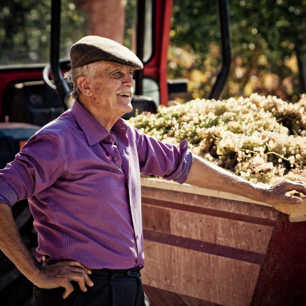 Emidio Pepe: il segreto dell'uva è lasciarla libera