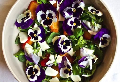 40 fiori da mangiare