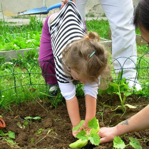 Come nutriamo i nostri bambini?