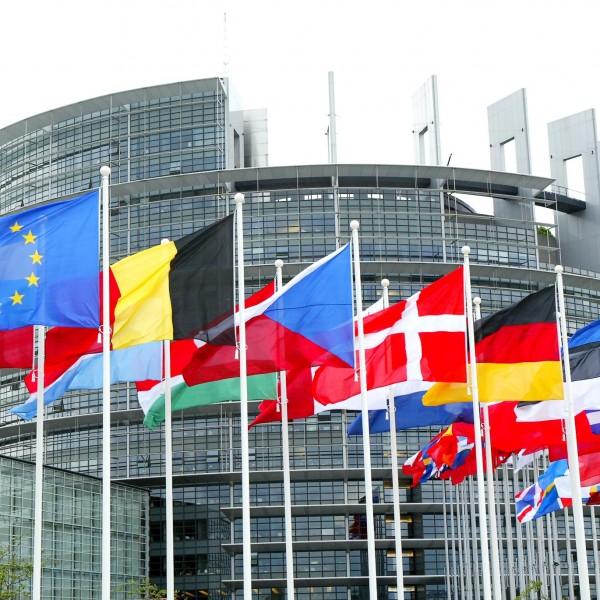 Glifosato: domani il voto definitivo dell'Europarlamento