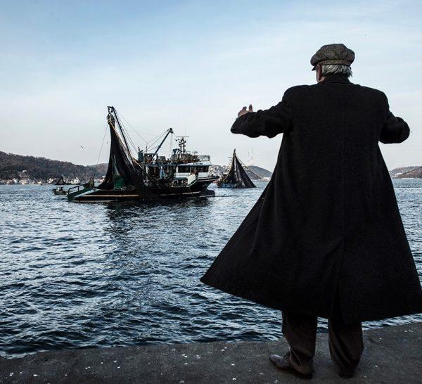Slow Fish on Film: proiezioni sotto le stelle del Porto Antico
