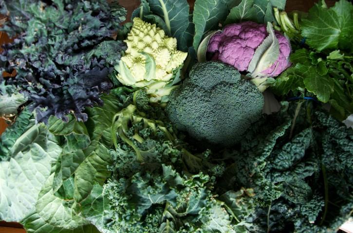 broccolicavoli