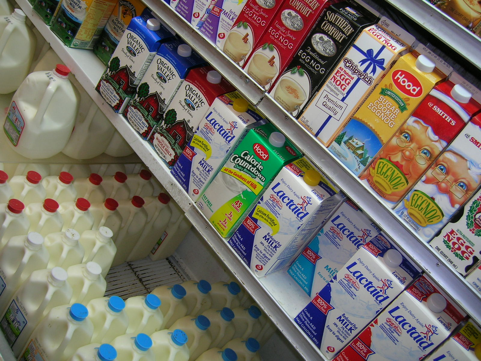 A scuola di spesa i Master Of Food: impariamo a leggere le etichette - Slow Food - Buono, Pulito e Giusto.
