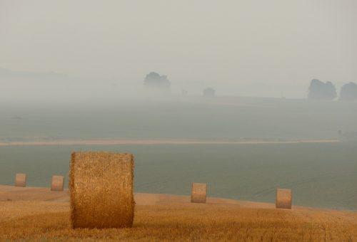 Agricoltura Slow, un altro modo di nutrire il pianeta è possibile