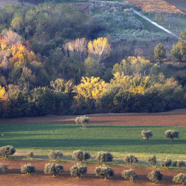 Il futuro degli Appennini passa per l'agricoltura