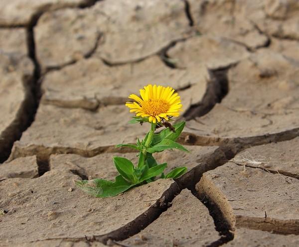È urgente dotare il Paese di una legge efficace sul consumo del suolo