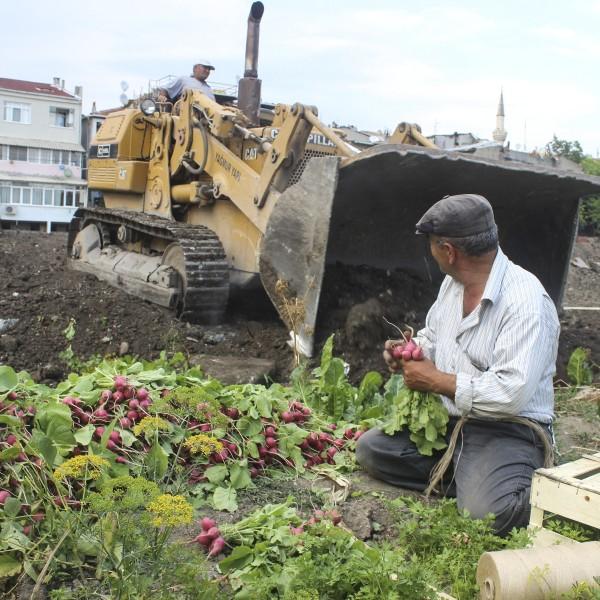 Salviamo gli orti delle mura di Istanbul