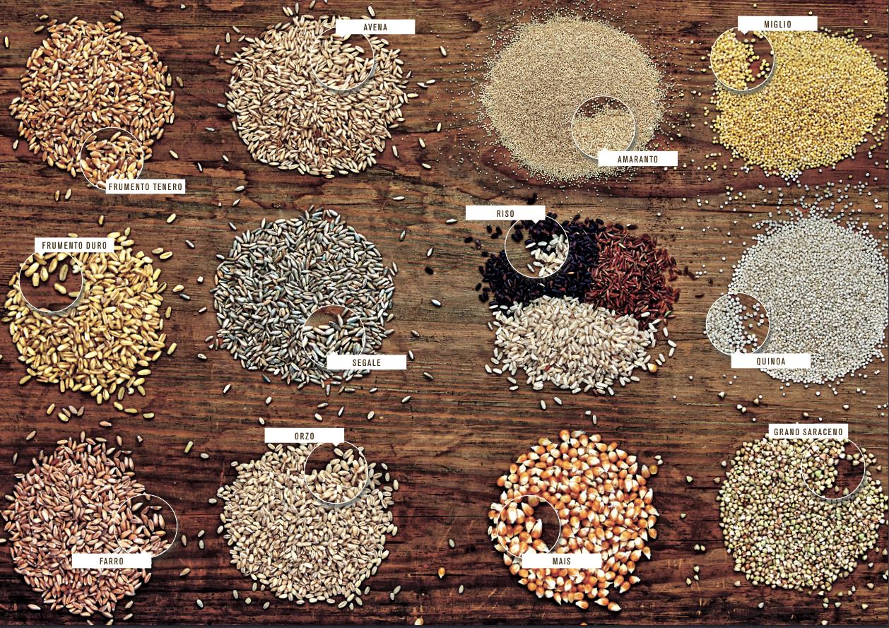 A tavola con i cereali 3 ricette in anteprima - Tutti in tavola ricette ...