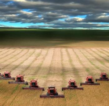 Caccia alla terra: accaparramento e speculazione mangiano l'agricoltura europea