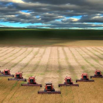 agricoltura-intensiva-mod