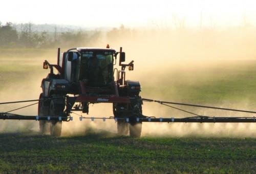 «Con gli Ogm l'uso dei pesticidi non è diminuito». Parola di scienziati