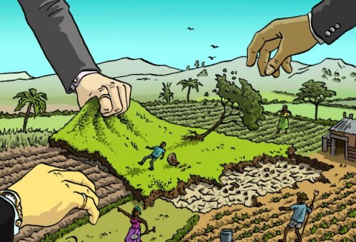 Il land grabbing si mangia l'Africa. Ma non alziamo le spalle, l'Europa (Italia compresa) non è fuori pericolo