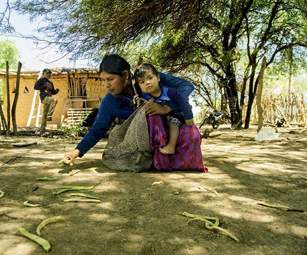 5 storie x 1000 progetti: le Mujeres del Gran Chaco