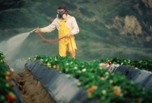 Pesticidi nelle acque, cresce percentuale di punti contaminati