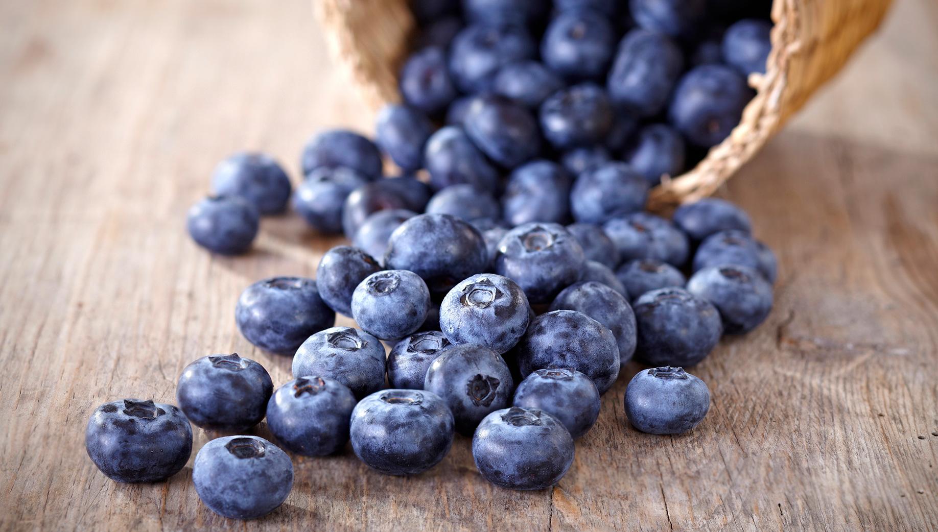 Finalmente il bosco dà i suoi frutti! - Slow Food - Buono, Pulito e Giusto.