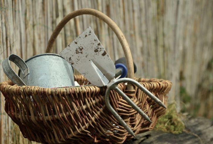 garden-gardening-1290900_960_720