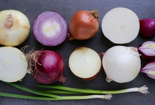 Piangete di gioia, a Ti porto nell'orto è arrivata la cipolla!