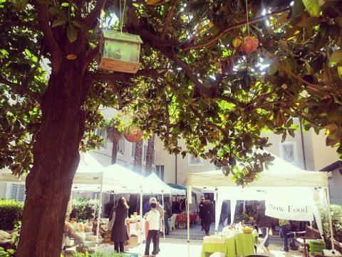 mercato_della_terra