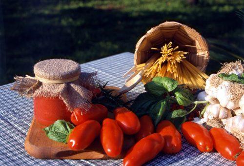 """Benvenuti pomodori da salsa. Ma scegliete quelli """"caporalato free"""""""