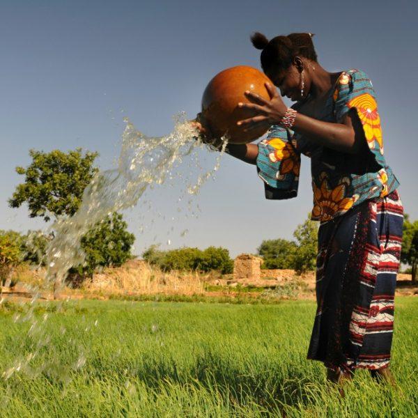 In Uganda, un Presidio Slow Food tutela le antiche varietà di miglio