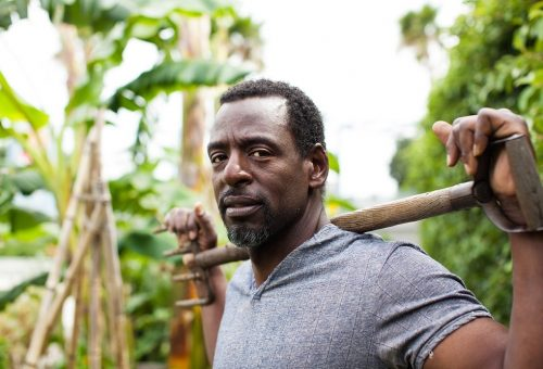 Dall'Africa a Los Angeles, l'orto è una rivoluzione che cresce