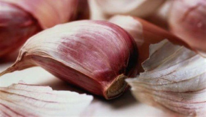 produttori-di-aglio-rosso-di-nubia_01