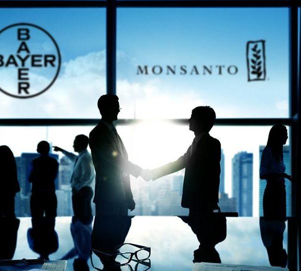 Bayer-Monsanto, un'operazione finanziaria sulle spalle degli agricoltori