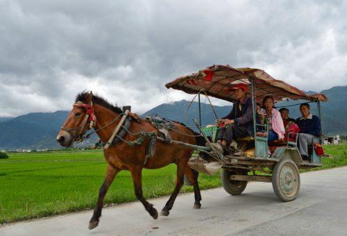 Inquinamento e agricoltura, la Cina inverte la rotta?