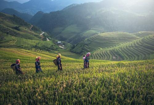L'alimentazione è il piatto forte al G7 dell'Ambiente