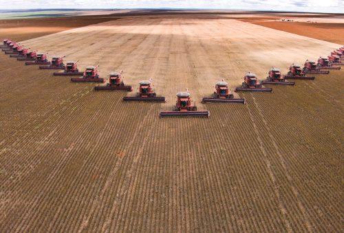 L'agricoltura è diventata «una macchina che trasforma petrolio»