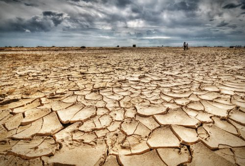 Overshoot day: la terra basta a soddisfare i bisogni di tutti, ma non l'avidità di pochi
