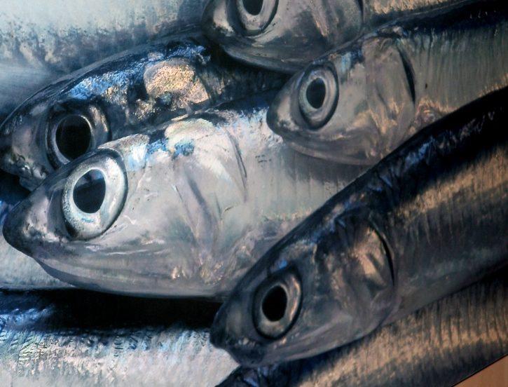 Al mercato del pesce. Quattro regole da seguire negli acquisti