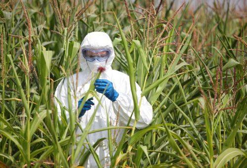 Monsanto, la scienza a libro paga